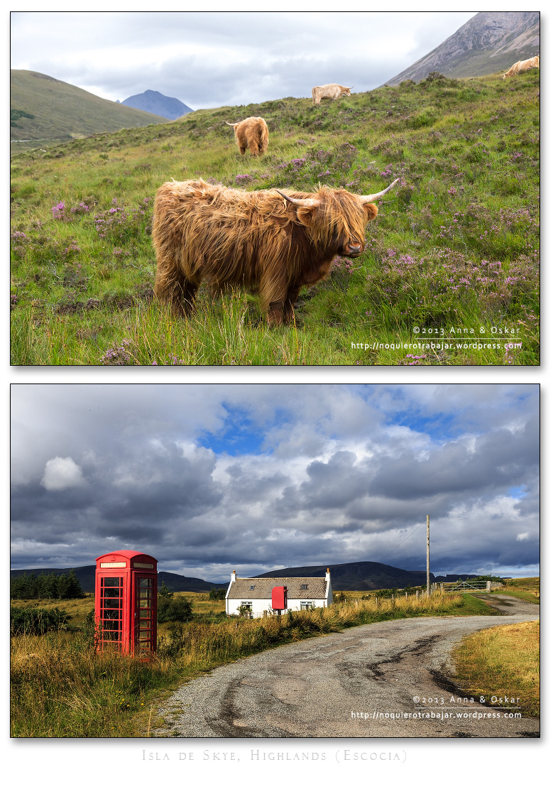 Highlands Cow & Red telephone box